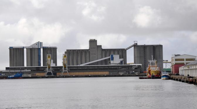 Travailler sur l'image : retour sur la rencontre du Grimaj autour du film Le Havre de Kaurismaki