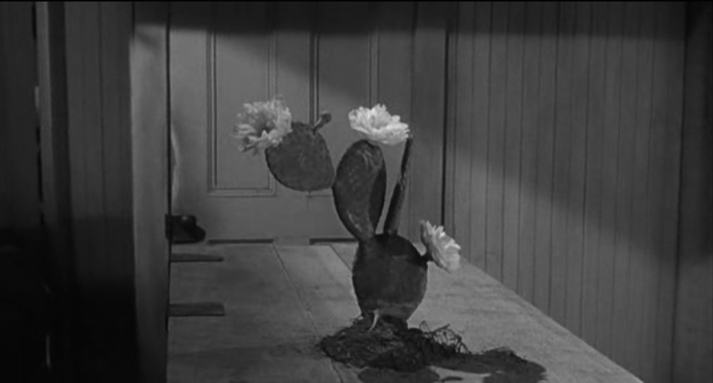 The Man Who Shot Liberty Valance. La fleur du désert de Doniphon-Wayne